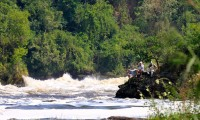 Fishing for Nile perch at the bottom of Murchison Falls